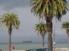 ship-from-avenue-of-the-palms-treasure-island