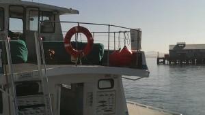 Sea Wolf II